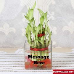 Customized Glass Vase
