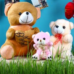 Exclusive Valentine Teddy Bear Combo for Baroda